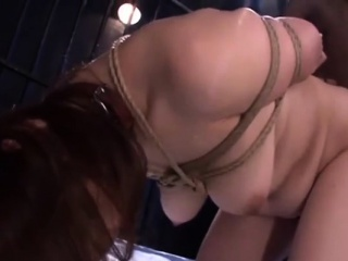 Bond Japanese Hustler Fucking Interracial Gangband